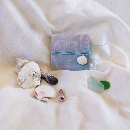 Seashell Book - Colour - Cover