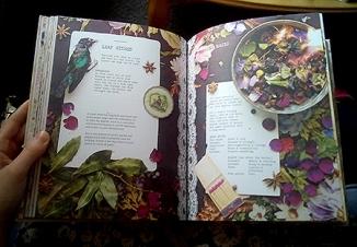 Magpie & The Wardrobe Book 02